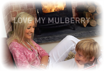 Love my Mulberry Multifuel Stove