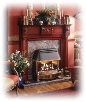View our range of Baxi Fires